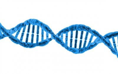 Is having your DNA tested a good idea ?